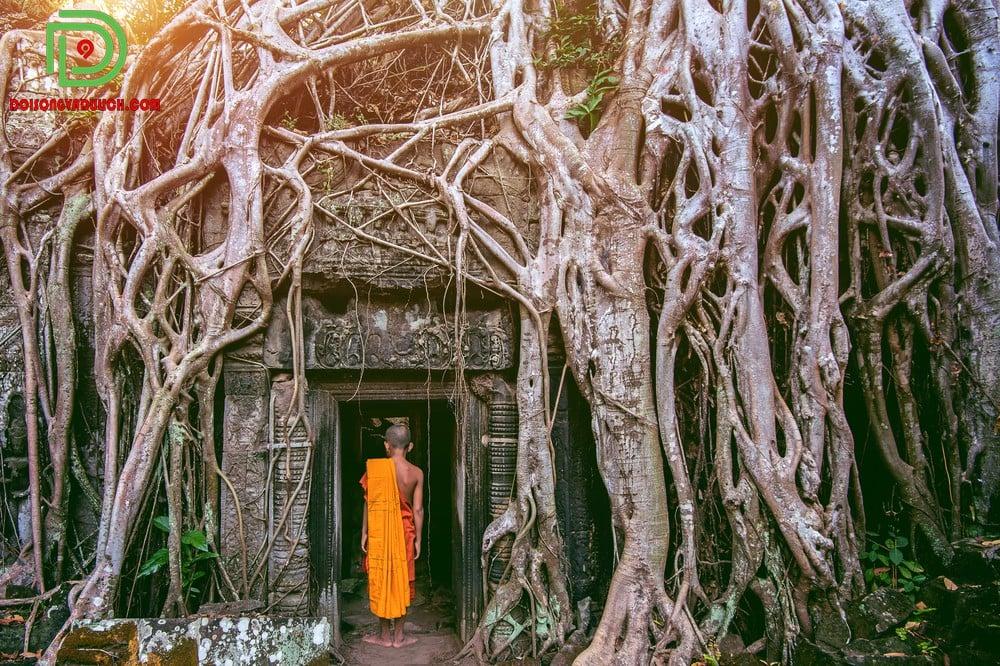 Đền Ta Prohm