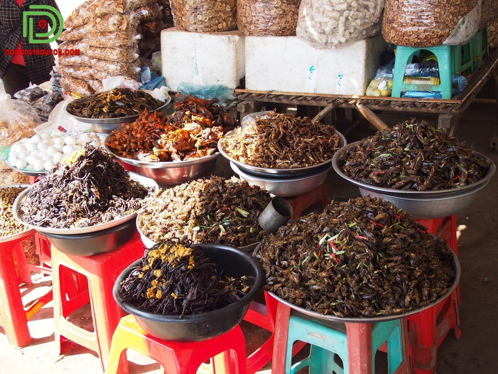 Đặc sản côn trùng ở Campuchia