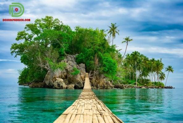 Đảo tre Campuchia