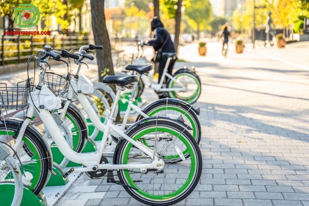 thuê xe đạp tự động tại hàn Quốc