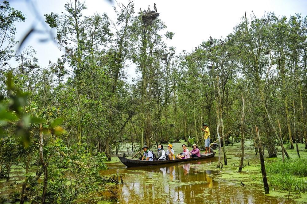 Kinh nghiệm du lịch vườn quốc gia Tràm Chim